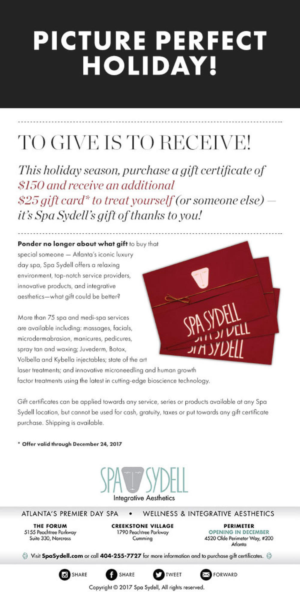 A Special Holiday Offer from Spa Sydell